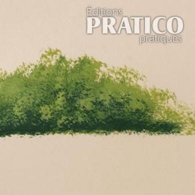 Comment Peindre Un Buisson En Peinture Sur Bois  En tapes