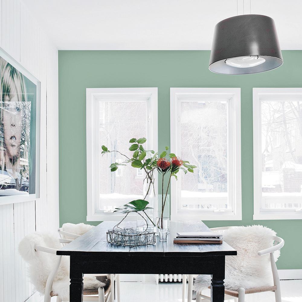 vert sauge salle manger inspirations d coration et r novation pratico pratique. Black Bedroom Furniture Sets. Home Design Ideas