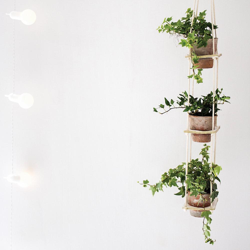 diy support plantes original en tapes d coration. Black Bedroom Furniture Sets. Home Design Ideas