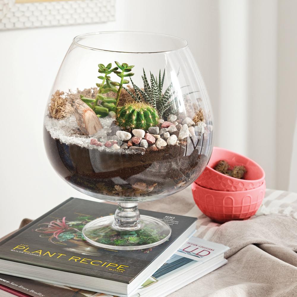 en tapes cr er un terrarium parfait en tapes d coration et r novation pratico pratique. Black Bedroom Furniture Sets. Home Design Ideas