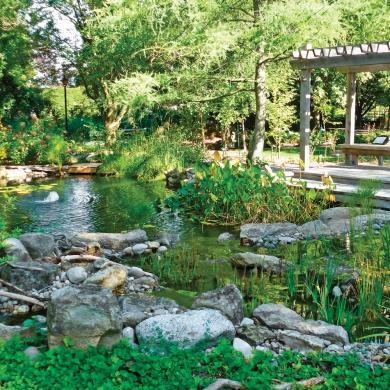 Jardin m ditatif cour inspirations jardinage et for Jardin et jardinage
