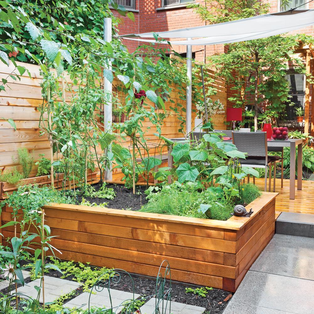 10 astuces pour un potager pas compliqu trucs et conseils jardinage et ext rieur pratico. Black Bedroom Furniture Sets. Home Design Ideas