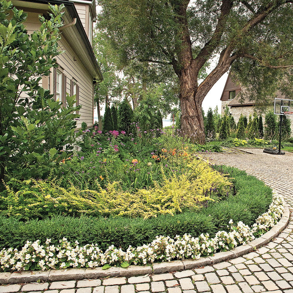 cinq r gles pour r ussir une nouvelle plate bande trucs et conseils jardinage et ext rieur. Black Bedroom Furniture Sets. Home Design Ideas