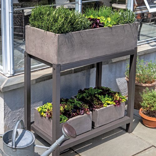 Shopping jardinage en pot trucs et conseils jardinage for Conseil en jardinage