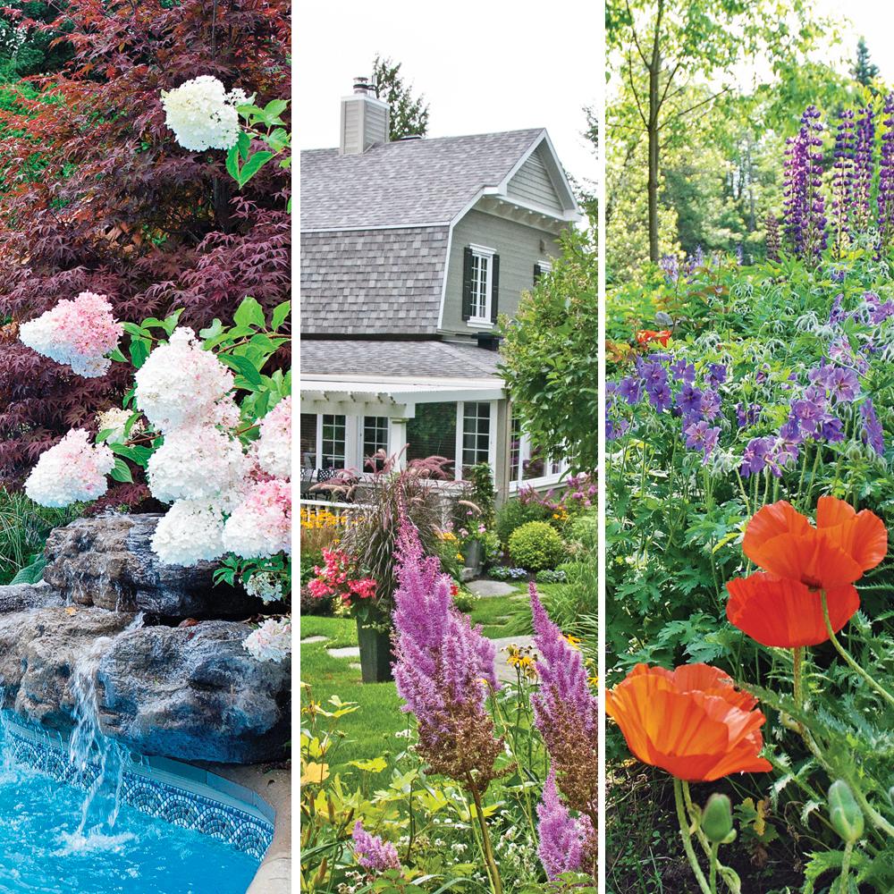 5 astuces pour un jardin color aux combinaisons harmonieuses trucs et conseils jardinage et. Black Bedroom Furniture Sets. Home Design Ideas
