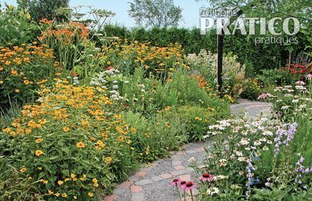 Incroyable Les Plates Bandes Fleuries Du Jardin Des Curiosités