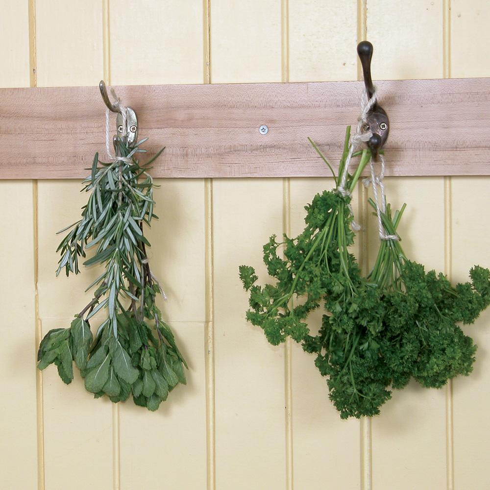 comment rentrer les fines herbes l 39 int rieur pour l 39 hiver trucs et conseils jardinage et. Black Bedroom Furniture Sets. Home Design Ideas