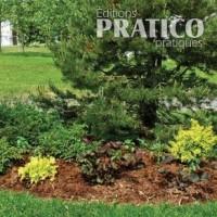 En Etapes Jardinage Et Exterieur Pratico Pratique