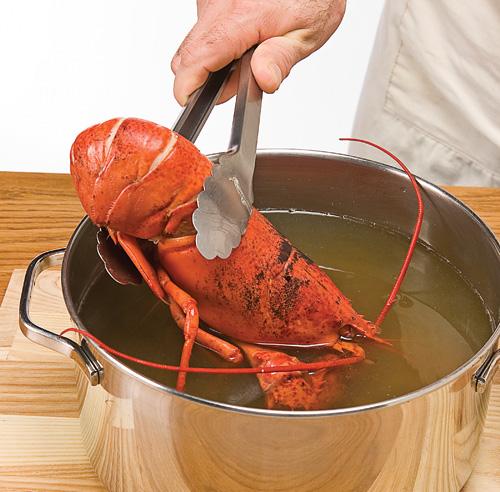 Comment cuire le homard trucs et conseils cuisine et - Comment cuisiner le homard ...
